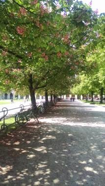 Munich's gardens